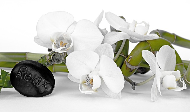 kamínek, květina,  bambus
